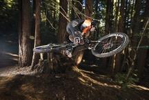 Bike life. / Bikes, bike, cycles, two wheels. Mountain, road, downhill, cyclox. Whatever you call it.