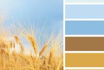 Shade card colours / Images that have the respective shades adjacent. / by Sara Anthony-Boon (BSc Hons.)