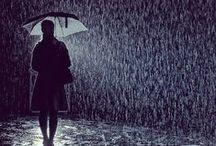 ✿ Rain... ☔️ ✿