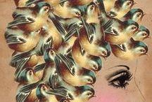 Bird ART & The Birds