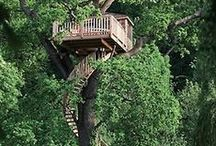 Treehouses & Playhouse & The Green Life / Tree houses or tree forts are platforms or buildings constructed around, next to or among the trunk or branches of one or more mature trees while above ground level. Tree houses can be used for recreation, work space, habitation, observation or as temporary retreats.