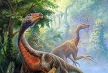 Dinosaurs & Prehistoric Life / Dinosaurs are a diverse group of animals of the clade Dinosauria. They first appeared during the Triassic period, 231.4 million years ago, and were the dominant terrestrial vertebrates for 135 million years, from the beginning of the Jurassic (about 201 million years ago) until the end of the Cretaceous (66 million years ago), when the Cretaceous–Paleogene extinction event led to the extinction of most dinosaur groups at the close of the Mesozoic Era.