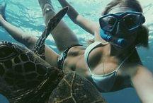 ~A d v e n t u r e / Life is one big adventure