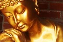 Buddha / by irma