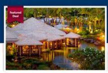 #Travel Deals You Shouldn't Miss!