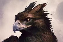 Griffin, Griffon