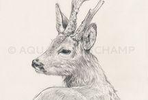 Roe deer siluets, graphic, tatoo ...