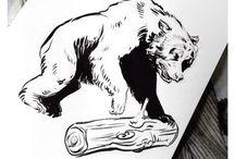 Bear drawing, painting