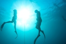 Enjoying Freediving in Amed / by The Jakarta Post Travel