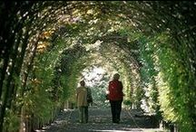 Elegant Gardens That Inspire / We love Gardens! Don't you?