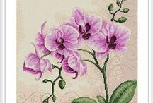 CrossStitch Orchid
