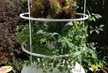 "Gardening - Tower Garden    www.Marilyn.TowerGarden.com / Grow your own healthy food in just 30"" of space with our innovative aeroponic growing system.  No dirt, no weeding, no green thumb required."