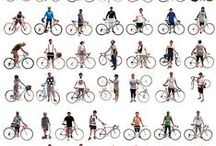 Biking & Triking / cargo & utility bicycles, urban bikes, commuter bikes, sporty bikes, touring bikes, everyday cycles, bikepacking, cycling gear