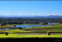 Hunter Valley, NSW, Australia / A beautiful place to come and stay. Lots of wineries, restaurants, the Hunter Valley Gardens, Tempus Two (great restaurants and shops), the Hope Estate and Bimbadgen, which are concert venues. facebook.com/winecountryvillas / by Wine Country Villas