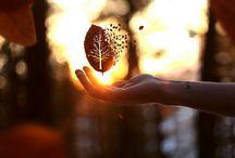 Magic / Amaze,capture,create