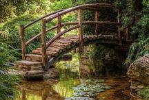 Aitoja ja siltoja / Vanhoja ränsistyneitä .....