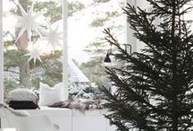 CHRISTMAS / Ideas and beautiful pictures of christmas