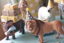 Animal theme for boys | Birthday