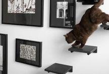 Kitty-cat decor