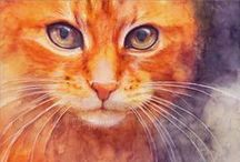 cats / by Cindy Savignano