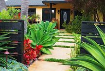 Front yard ideas for the home ⛲ / All things front yard  / by Carol