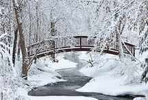 Winter Weddings Ideas / No winter blues in here, only winter cues! The snowy season is beautiful for a wedding and we've got some inspiration and ideas for you holiday brides!