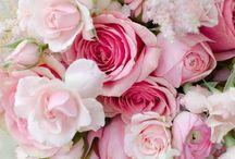 ~  ' * Blooming Flowers * '  ~