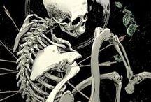Skull'n'bones