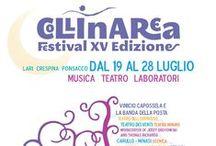 I manifesti del Festival Collinarea / I manifesti del Collinarea Festival dal 2001 ad oggi