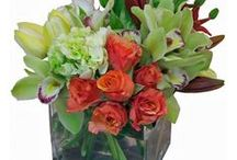 Orchids / Sparks Florist's use of orchids in various types of arrangement styles.