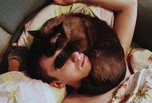 Tous à poils ... Barbus, chatons & Co / Les poils c'est la vie !