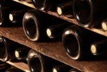 œnologie  / des photo sur le vin