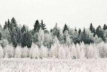   to enjoy winter