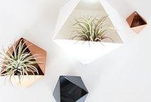 Design planters