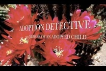 """ADOPTION DETECTIVE: Memoir of an Adopted Child / The book """"Adoption Detective: Memoir of an Adopted Child"""" provides insight into the mind of a child who is orphaned, fostered, and adopted. Judith Romano's mature awareness and opinions about the value of self-identity and family connections are educational and inspirational.    / by Adoption Detective"""