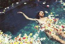 Florals / by Leilani Bishop Fragrances