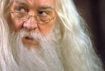 "Albus Dumbledore / Albus Percival Wulfric Brian Dumbledore (""white; rock, crag""/ after his father/""wolf-power""/""bumblebee"") - First child and son of Percival and Kendra Dumbledore. Born in the summer of 1881. White-haired and long-bearded wizard, who was ginger in his youth. Sorted into Gryffindor. Transfiguration professor at Hogwarts and later Headmaster. Friends with Gellert Grindelwald. Founder of the Order ofthe Phoenix. Possesed all of the deadly hallows. Patronus: phoenix"
