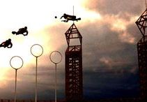 Flight and Quidditch
