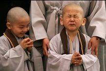 BUDDHISM/ MEDITATION/ THICH NHAT HANH