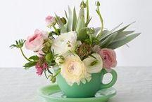 Wedding Centerpieces / Flowers