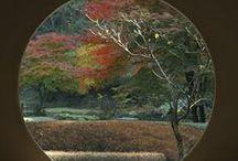 Opetus: Japanilaistyylinen puutarha