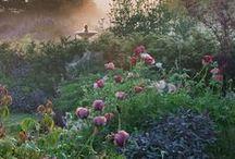 Opetus: Englantilaistyylinen puutarha