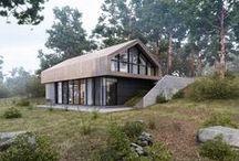 Forest House / Aleksandra Nuzhnaya / nowoczesna STODOŁA / Projekt współgra z naturalnym otoczeniem.