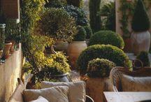 Jardins : Terrasses