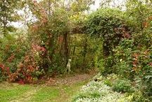 Kouzelná přírodní zahrada / Přírodní zahrada, která má své kouzlo, tajná zákoutí, moderní nádech, staré tajemství.