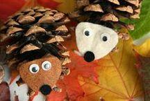Ősz/Autumn
