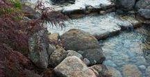 Экстерьер (водоёмы и т.п.)