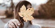 FALL VIBES / Fall, Autumn, Herbst, Blätter, Leaves, bunte Farben, Natur, Jahreszeit, Kürbis, herbstlich, fall vibes