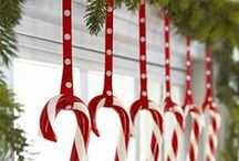 Candy Cane Forest / holidays