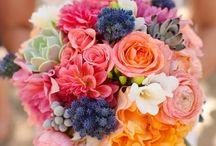Garden party / wedding, garden party